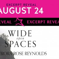 Excerpt Reveal ~ Wide Open Spaces by Aurora Rose Reynolds