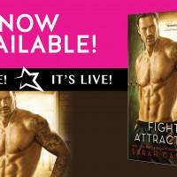 Release Blitz~Fighting Attraction (Redemption Book 4) by Sarah Castille