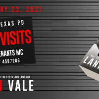 Cover Reveal ~ CONJUGAL VISITS (Souls Chapel Revenants MC Book 2) by Lani Lynn Vale
